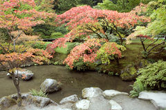 Autumn charm in Japanese garden Stock Photos