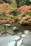 Autumn charm in Japanese garden. Beautiful autumn colors with pond and rocks Stock Images
