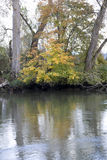 Autumn charm at Snohomish River Royalty Free Stock Photo