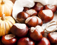 Autumn Chestnuts Royalty Free Stock Photo