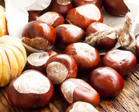 Autumn Chestnuts Stock Photography