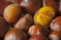 Autumn chestnuts fresh from oven. Natural sweet chestnuts just roasted and ready to eat royalty free stock photos