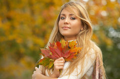 Autumn Chick royalty free stock photography