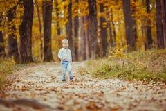 11 autumn child Arkivfoton