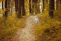 11 autumn child Arkivbilder