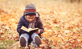 11 autumn child Royaltyfri Bild