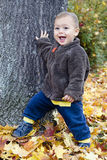 Autumn child. Happy toddler child playing with atumn or fall leaves Stock Photos