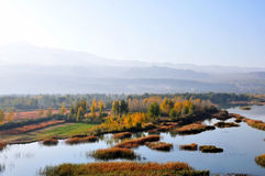 Autumn. 2014.10.11 on China autumn Royalty Free Stock Images
