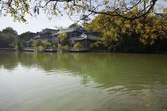 Autumn Chinese garden Stock Photography