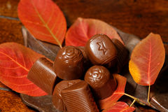 Autumn Chocolates Royalty-vrije Stock Fotografie