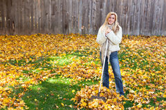 Autumn chores Stock Images