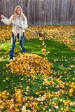 Autumn chores Royalty Free Stock Image