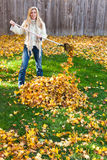 Autumn chores Stock Photos