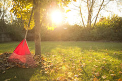 Autumn Chores Royalty Free Stock Photo