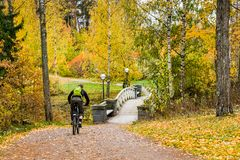 Autumn ciclyng in parks Stock Photos
