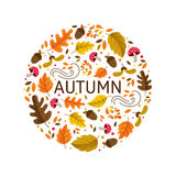 Autumn circle emblem. Vector greeting card with autumn elements made in circle and monoline lettering. Mushroom, acorn, maple leaves isolated on white background Royalty Free Illustration