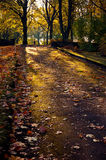 Autumn in city garden Royalty Free Stock Photos