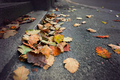 Autumn in city Royalty Free Stock Photography