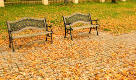Autumn city park. Two benches in city park Royalty Free Stock Photo