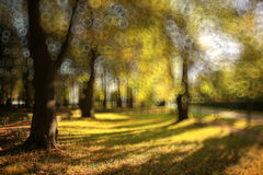 Autumn city park Royalty Free Stock Images