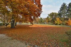 Autumn city park filled with colorful leaves Royalty Free Stock Images