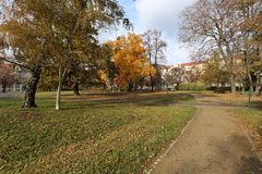 Autumn city park filled with colorful leaves Stock Photos