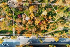 Autumn city park with gardening and landscape design. Green zone area with path for walking and running. Aerial view.  stock photos