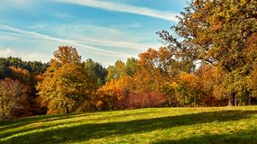 Autumn city Park with green grass and bright trees. Autumn Park with green grass and bright trees. Beautiful natural landscape royalty free stock image