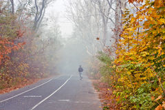 Autumn city park, jogging path. Autumn city park, jogging and bike path Royalty Free Stock Photo