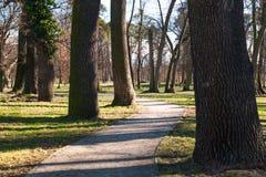 Autumn city park Stock Image