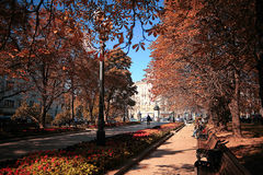 Autumn city park Royalty Free Stock Photography