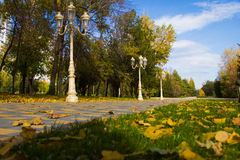 Autumn city park - Stock photos Royalty Free Stock Images