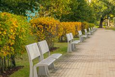 Autumn in the city park. Stylish modern metal benches for rest in the city park royalty free stock photos