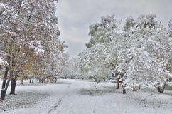 Autumn city park under first snow. Royalty Free Stock Photos