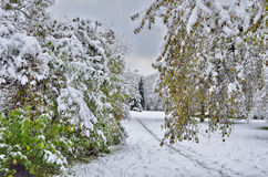Autumn city park under first snow. Royalty Free Stock Photography