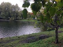 Autumn city pond in Moscow stock photos