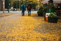 Autumn city scene. Selective focus on yellow foliage on the road. People walk next to a cafe in the background. Autumn city scene. Selective focus on yellow Stock Image