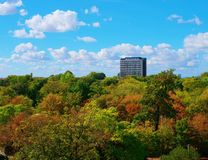 Autumn city skyscraper surrounded by forest. Autumn in the city skyscraper surrounded by forest royalty free stock photos