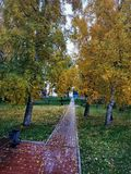 Autumn city square. Autumn square. Path, fallen yellow leaves stock image