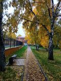Autumn city square. Yellow fallen leaves on the bench, sidewalk and grass royalty free stock image
