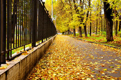Autumn City Street. Aspect from an autumn city in an Eastern European city-Moscow, Russia Stock Photos