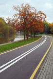 Autumn cityscape with rowan. And bicycle path Royalty Free Stock Photos