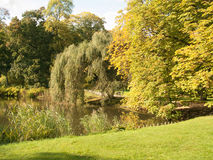 Autumn classic park over pond Stock Image