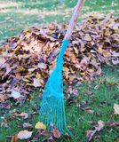 Autumn cleaning Royalty Free Stock Images