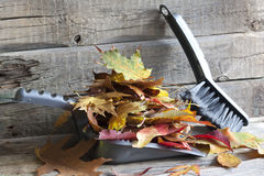 Autumn cleaning abstract with leaves Stock Photography
