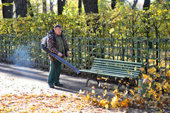 Autumn cleaning fallen leaves Stock Photo