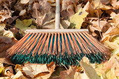 Autumn cleaning Royalty Free Stock Image