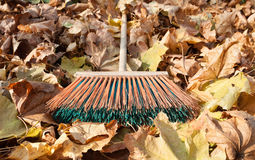Autumn cleaning Royalty Free Stock Photos
