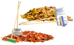 Autumn cleaning Stock Photography
