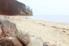 Autumn cliff in Orlowo, Gdynia Poland Royalty Free Stock Photography